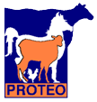 LOGO PROTEO (PNG)